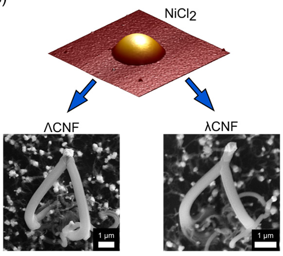 Lambda shaped carbon nanofibres