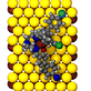 Tripodal Molecule on Au(111)